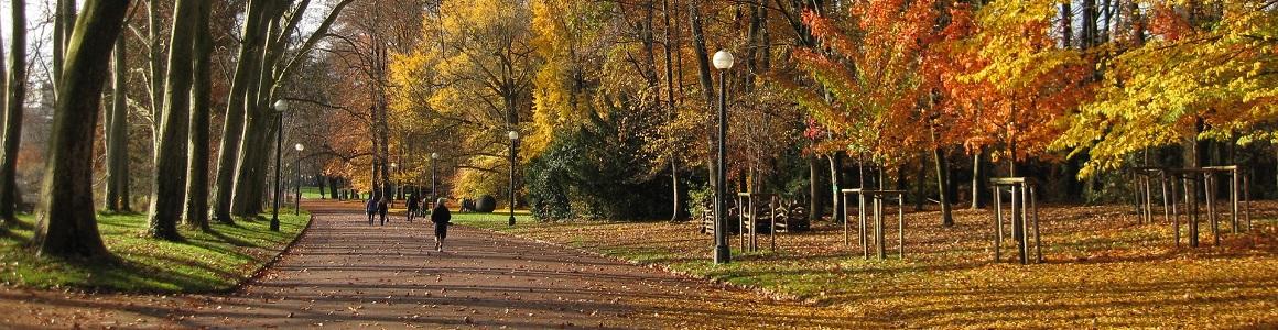 Top 5 des plus beaux parcs lyonnais